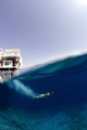 Diving into crystal waters in the Gulf of Aqaba