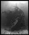 Stern of the Giannis D in the Red Sea.