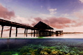 Pier at Kri Eco Resort, Raja Ampat