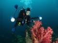Underwater Photographer, Truk Lagoon
