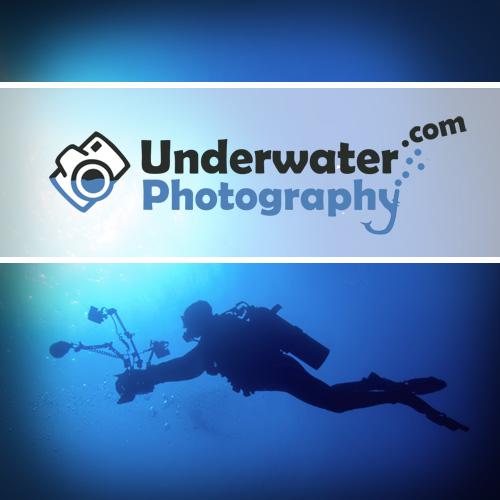 Underwaterphotography.com Blog Launch