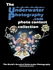 The UnderwaterPhotography.com photo course collection