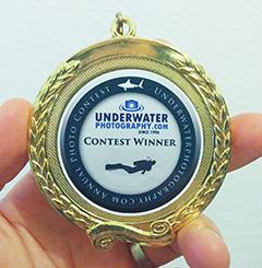photo contest winner's medal