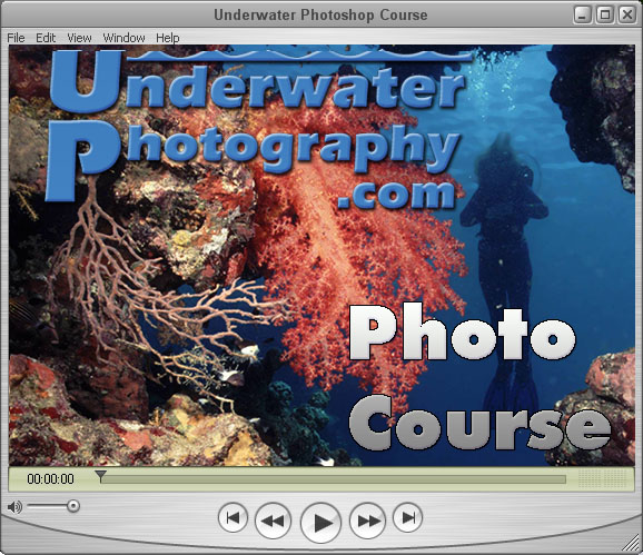 click to run a sample video tutorial about important u/w photo techniques